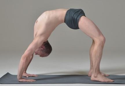 planning des séances de yoga de l'atelier de yoga rené